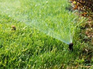 choosing a sprinkler system